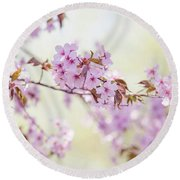 Round Beach Towel featuring the photograph In Tender Bloom. Spring Watercolors by Jenny Rainbow