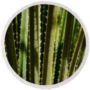 In The Cactaceae Weeds Round Beach Towel