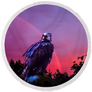 In The Eye Of A Hawk Round Beach Towel by Glenn Feron