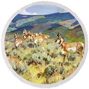 In The Foothills - Antelope Round Beach Towel
