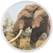 Round Beach Towel featuring the painting In The Footsteps Of Elders by Alan M Hunt