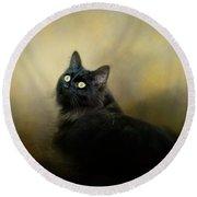 In The Garden Light Cat Art Round Beach Towel