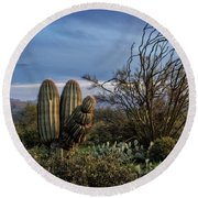 Round Beach Towel featuring the photograph In The Green Desert  by Saija Lehtonen