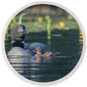In The Lillies... Round Beach Towel