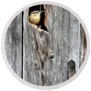 In The Outhouse Shed Round Beach Towel