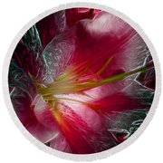 In The Pink Round Beach Towel by Stuart Turnbull