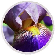 In The Purple Iris Round Beach Towel by Lyle Crump