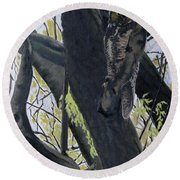 In The Shadow-ojibway Great Horn Owl Round Beach Towel