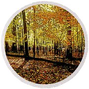 In The The Woods, Fall  Round Beach Towel