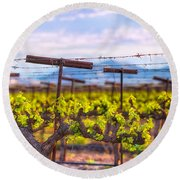 In The Vineyard Round Beach Towel
