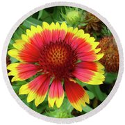 Indian Blanket Flower Round Beach Towel