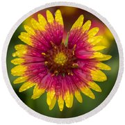 Indian Blanket Round Beach Towel
