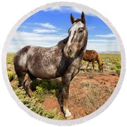 Indian Horse In The Desert Round Beach Towel