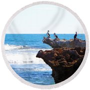Indian Ocean Birds Resting On Rocks Round Beach Towel
