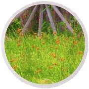 Round Beach Towel featuring the photograph Indian Paintbrush Flowers by Tom Singleton