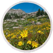 Indian Peaks Summer Wildflowers Round Beach Towel