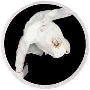 Round Beach Towel featuring the photograph Indian Pipe Head by Meta Gatschenberger