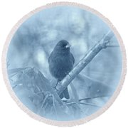 Round Beach Towel featuring the photograph Indigo Bunting In Blue by Sandy Keeton