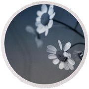 Indigo Daisies 2- Art By Linda Woods Round Beach Towel by Linda Woods