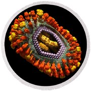 Influenza Virus Cutaway 5 Round Beach Towel