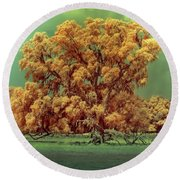 Infrared Surreal Tree Canopy Round Beach Towel