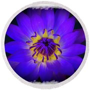Round Beach Towel featuring the photograph Inner Glow by Keith Hawley