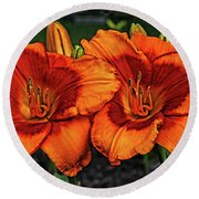 Round Beach Towel featuring the photograph Innocent Fire by Judy Vincent