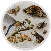 Insects, Currants And Butterfly Round Beach Towel