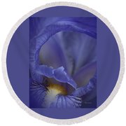Inside The Iris Round Beach Towel