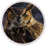Intense Owl Round Beach Towel