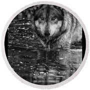 Round Beach Towel featuring the photograph Intense Reflection by Shari Jardina