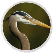 Intensity Of A Heron Round Beach Towel