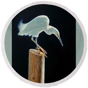 Interlude - Snowy Egret Round Beach Towel