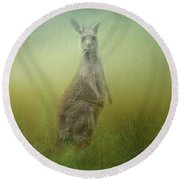 Interrupted Meal Round Beach Towel by Wallaroo Images