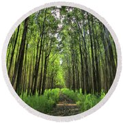 Round Beach Towel featuring the photograph Into The Forest by DJ Florek
