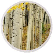 Round Beach Towel featuring the photograph Into The Forest by Gary Lengyel