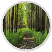 Round Beach Towel featuring the photograph Into The Forest I Go by DJ Florek