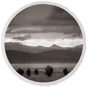 Round Beach Towel featuring the photograph Into The Sunset - Bw by Chris Bordeleau