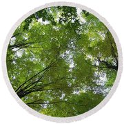 Round Beach Towel featuring the photograph Into The Trees by Michael  TMAD Finney