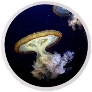 Invasion Of The Japanese Sea Nettles Round Beach Towel