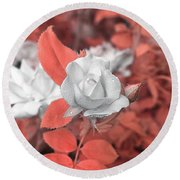 Ir Rose  Round Beach Towel