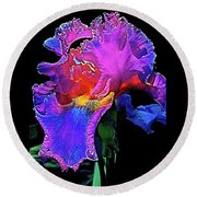 Round Beach Towel featuring the photograph Iris 3 by Pamela Cooper