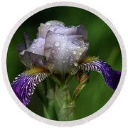 Iris After The Rain 1409 H_2 Round Beach Towel