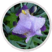Iris After The Rain IIi Round Beach Towel
