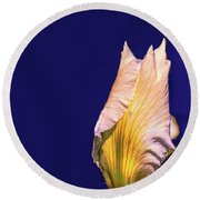 Iris Beginning To Bloom #g0 Round Beach Towel