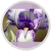 Round Beach Towel featuring the photograph Iris Close-up by Sheila Brown