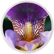 Round Beach Towel featuring the photograph Iris Close Up by William Selander