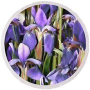 Round Beach Towel featuring the photograph Iris Fantasy by Benanne Stiens