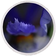 Iris Feathers Round Beach Towel