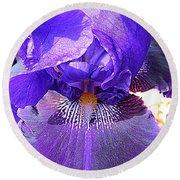 Iris Garden 16 Round Beach Towel by Randall Weidner